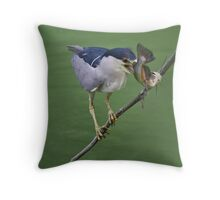 Black Crowned Night Heron with his Catch Throw Pillow