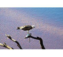 Successful Fishing Photographic Print