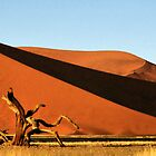 Dunes, Dead Tree &amp; Dry Tsauchab River Valley, Namibia  by Carole-Anne
