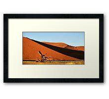 Dunes, Dead Tree & Dry Tsauchab River Valley, Namibia  Framed Print