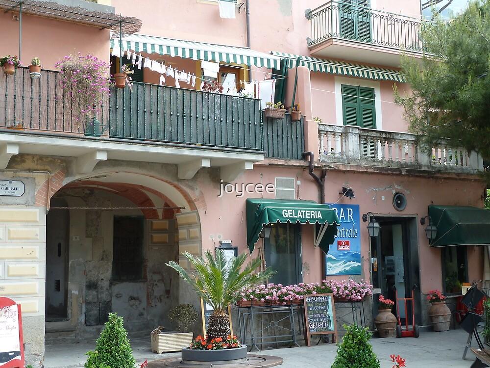 Washing - Monterosso, Italy by joycee