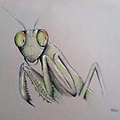 Mantis by Helena Babic
