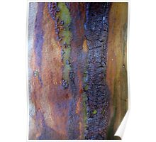 Tapestry Tree Trunk Poster