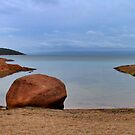 Honeymoon Bay, Freycinet ,Tasmania by Ali Brown