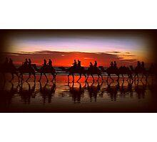 Broome Camel Train Photographic Print