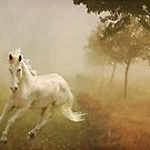 In the mist  by Irene  Burdell