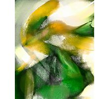 Green Fish Yellow Photographic Print