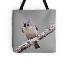 Tufted titmouse perched on a branch Tote Bag