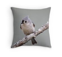 Tufted titmouse perched on a branch Throw Pillow