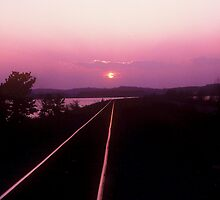 Light Rail by Rodney Williams