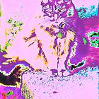 Psychedelic Cat by DreamCatcher/ Kyrah Barbette L Hale