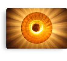 sun light Canvas Print