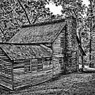 Tipton House Circa 1870's by Scott Lebredo