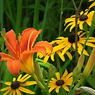 Lily and Black-eyed Susans - Wapsi Flowers by Deb Fedeler