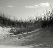Behind the Dunes by Steve Leach