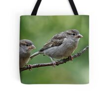 Fledgling house sparrows Tote Bag