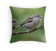 Fledgling house sparrows Throw Pillow