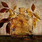 Bottle & Leaves by Barbara Ingersoll
