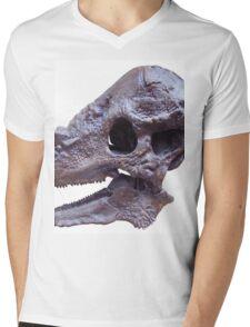 Beautiful Pachycephalosaurus Mens V-Neck T-Shirt