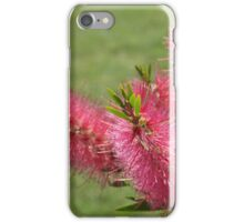 Australian Native in Flower iPhone Case/Skin