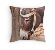 The slave Donkey Throw Pillow