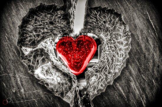 Heart of Rememberance by Luke Griffin