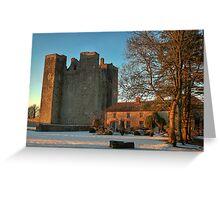 Barryscourt Castle in Winter Greeting Card