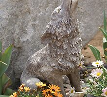 Revelation 4:11 Coyote; A Garden of inspiration: All beings have a purpose; La Mirada, CA USA by leih2008
