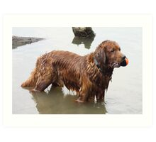 Loki Standing Tall Proud And Dripping WET! 11 Art Print