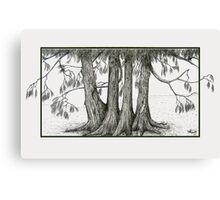 Linden Trees Canvas Print