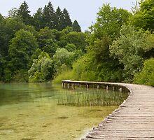 Walkway at the lake. by cloud7