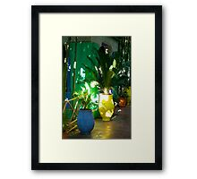Colouful Pot Plants Framed Print