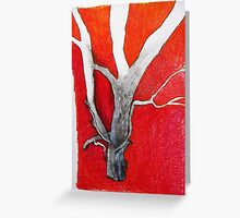 gum tree with red back ground Greeting Card