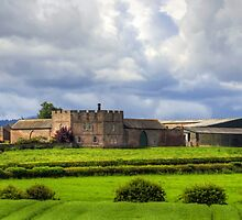 Bunker's Hill Farm by Tom Gomez
