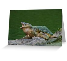 Holy Snapper! Greeting Card