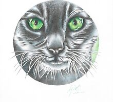 CIRCLE CAT by Marty  Parker