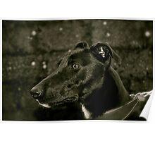 Greyhound x  Poster