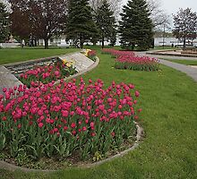 Spring Comes To The City Park! by AliceMc