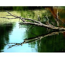 Reflections In The Waters Photographic Print