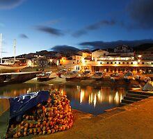 Fishing harbour by Gaspar Avila