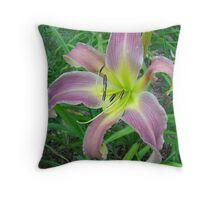 Pink Spider Throw Pillow