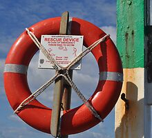 Life Buoy by Margaret Stevens