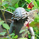 Garden Dwellar by shutterbug2010