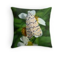 "So delightfully ""bella""!  The beautiful Ornate Bella Moth Throw Pillow"