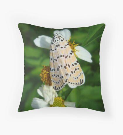 "So delightfully ""bella""!  The beautiful Ornate Bella Moth Throw Pillow"