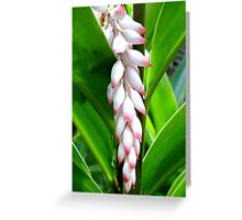 Formal Bloom Greeting Card