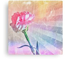 Pastel Carnation Canvas Print