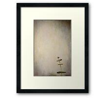 Pirouette Framed Print