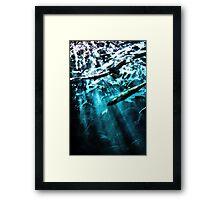 Shark Tank Framed Print
