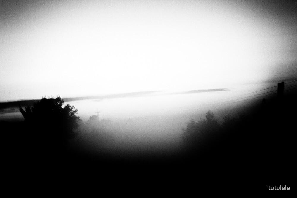Sunset, Black/White by tutulele
